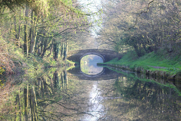 an image a bridge over the lancaster canal bordered by budding spring trees